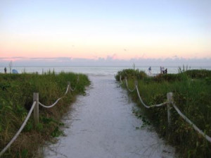 Solo on Sanibel Island – Day 1
