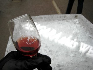 Chilling Out at Niagara Icewine Festival