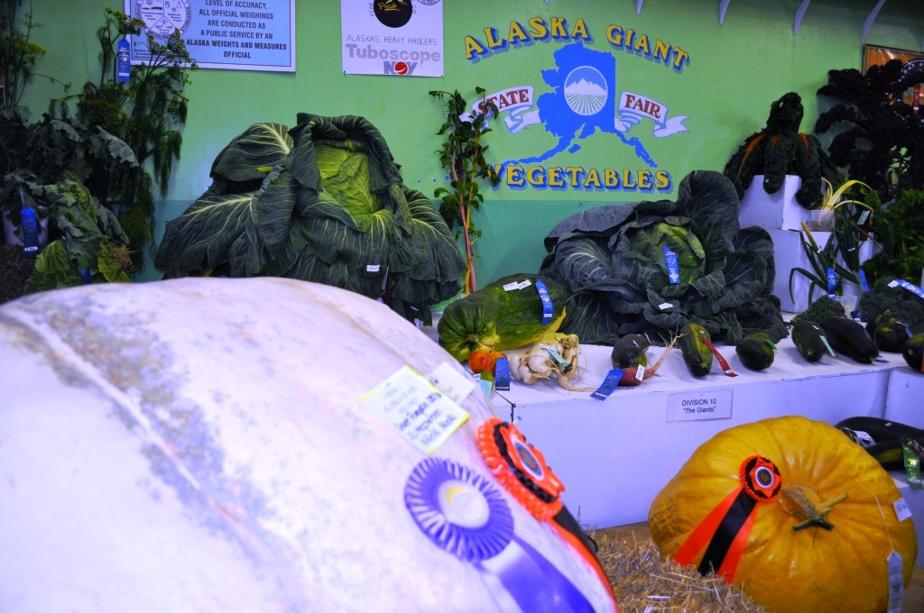 Giant Veggies at the 2011 Alaska State Fair in Palmer