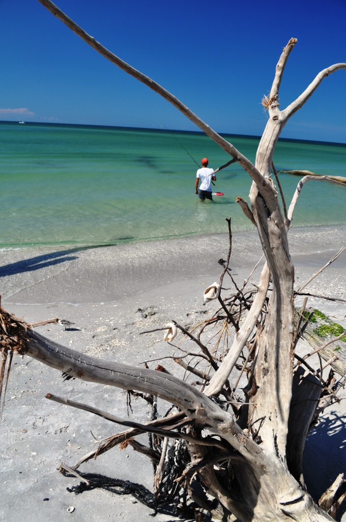 Enjoying the Last Sunday of Summer 2011 at Stump Pass Beach State Park, Englewood, Fla.