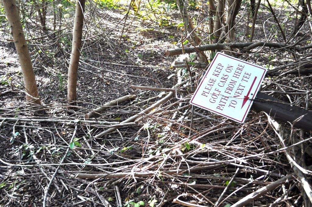 Golf Car Crossing, Wildflower Preserve, Cape Haze, Fla., Dec. 3, 2011