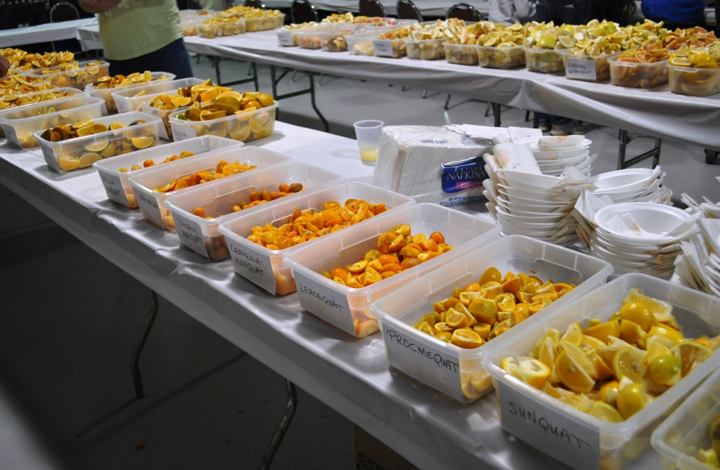 Sample Fresh Florida Citrus & Tropical Fruit for $1 a Plate at the Florida State Fair