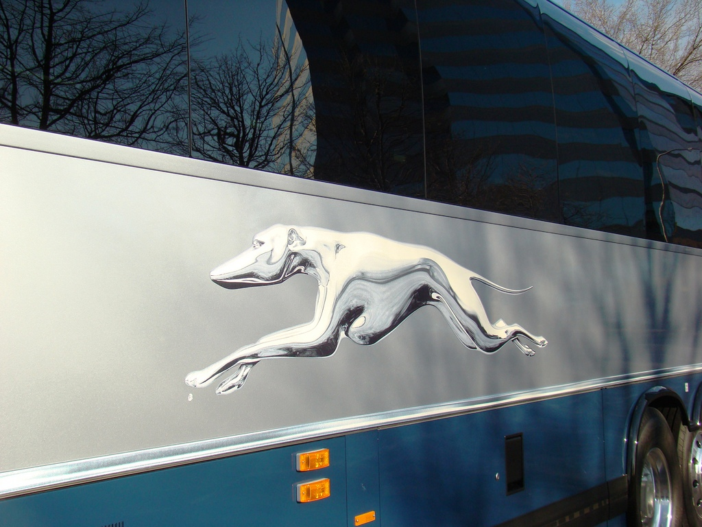 Greyhound Express Now Available in Florida