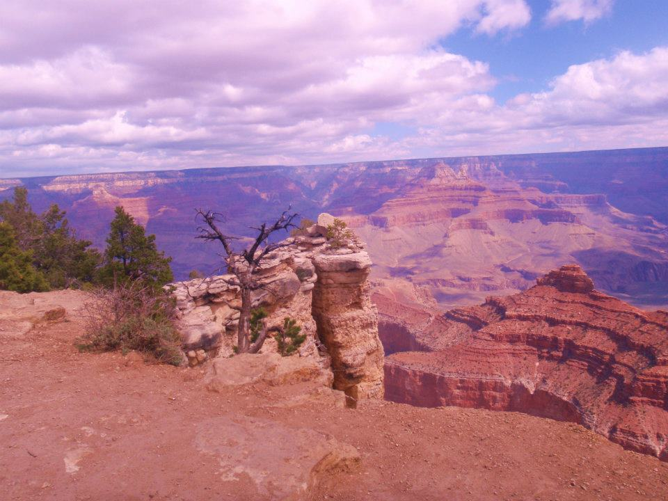 Who's Heading to Grand Canyon National Park, Arizona, this Summer?