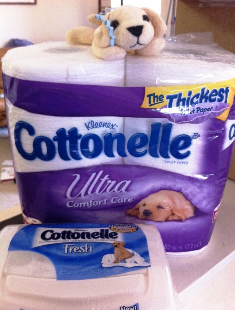 Let the Creativity Flow with Cottonelle's Name Generator