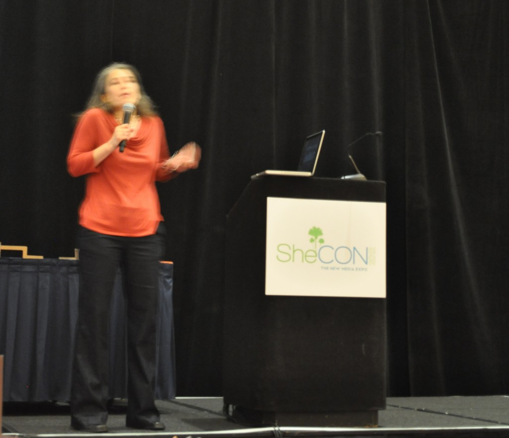 "Aliza Sherman Presents ""Pinning Our Lives"" During SheCon 2012 at Coronado Springs Resort, Disney World, Fla."