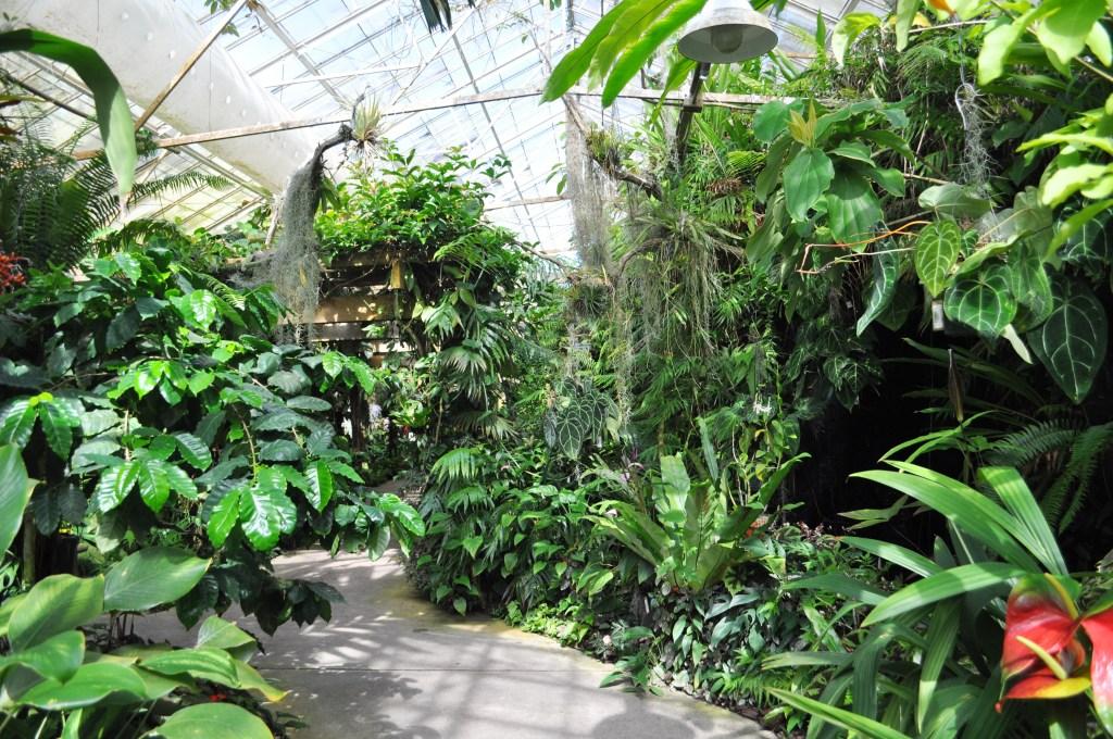 Conservatory, Selby Botanical Gardens, Sarasota, Fla.
