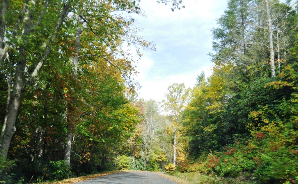 Fall Foliage is Beginning to Show Near Burnsville, N.C., Sept. 28, 2012