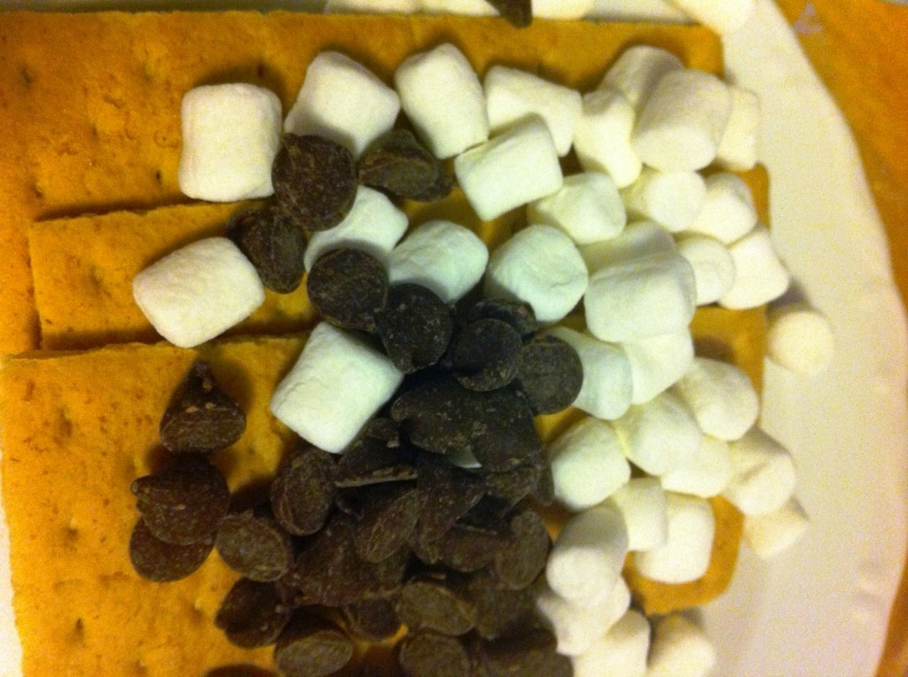 The Fixings for S'mores. Yum!