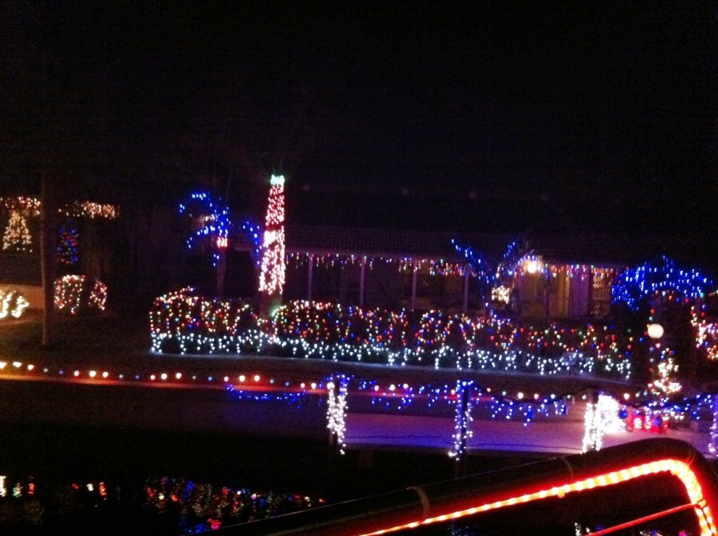 Just Some of the Punta Gorda Residences Lit Up for the Knig Fisher Fleet Christmas Canal Cruises, Dec. 2012