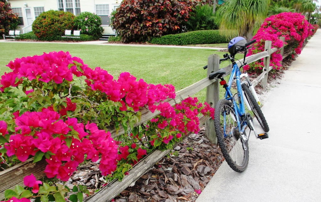 Where Will You Vacation this Summer? Pictured, Boca Grande, Fla.