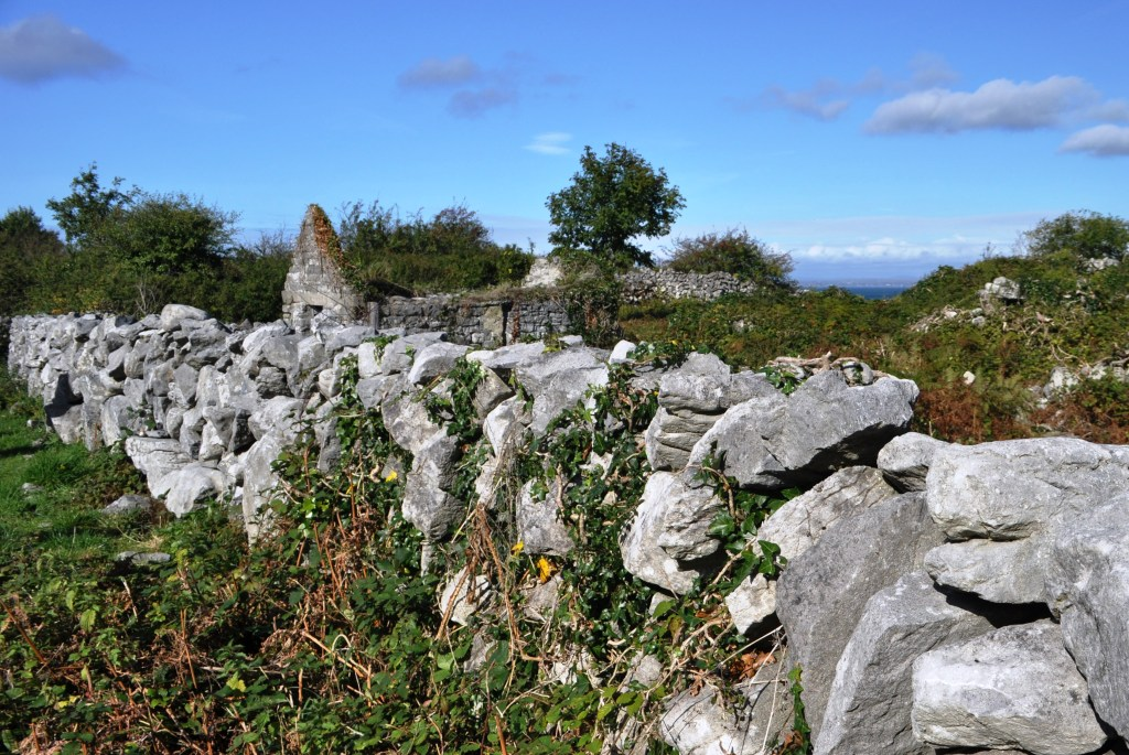 Remains of a Home in County Clare, Across from the Pinnacle Well