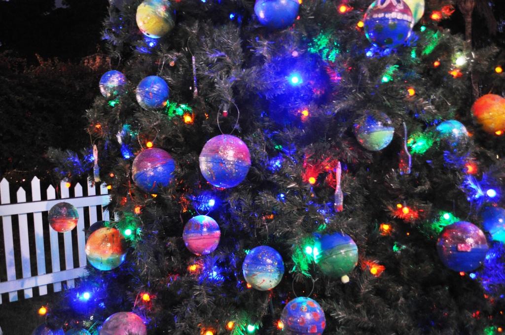 A Florida Christmas Tree