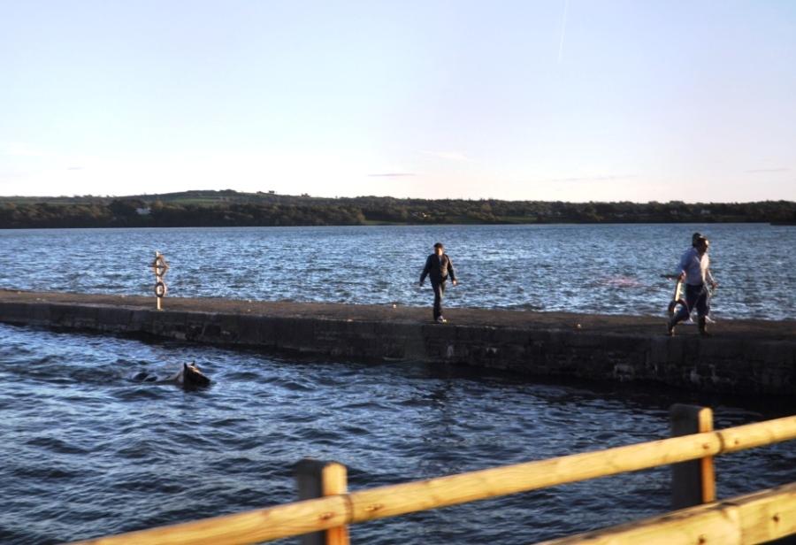 Seeing Irish Travellers in Southwest Ireland Wasn't Like Reality TV