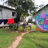 Travel to the Dominican Republic: Horseback Riding to El Limón Waterfall in Samaná