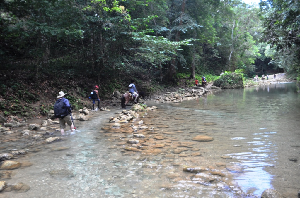 Horses Cross a Stream on their Way to El Limón Waterfall
