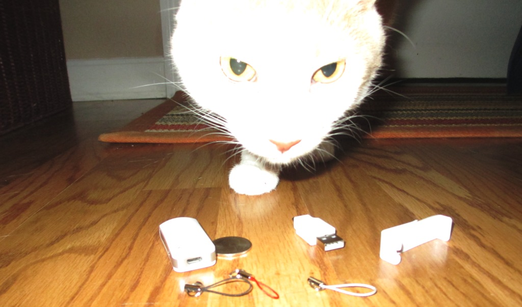 Whoa! Monster Kitty Checking Out the Bluetooth Technology of the nio Tag