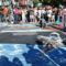 Wordless Wednesday: Amazing, Temporary Art at the Chalk Festival in Sarasota, Florida